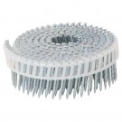 COIL NAILS 50MM SCREW SHANK STAINLESS FLAT  BOX/2000
